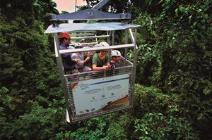 Canopy Tram Ride, Monteverde Cloud Forest