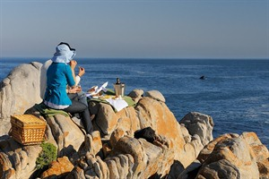 Land based whale watching Grootbos