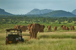 Elephant Watch Camp Game Drive