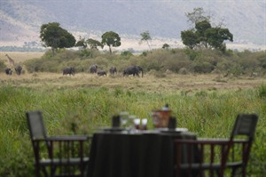 Governors Camps lunch with elephants