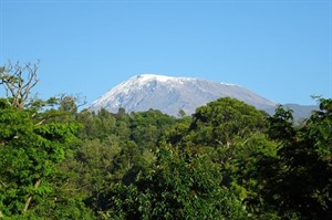 Kilimanjaro Group Climb - Lemosho Route 1