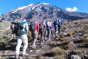 Kilimanjaro Group Climb - Lemosho Route 2