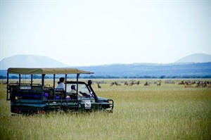 Game drive, Grumeti Serengeti Tented Camp