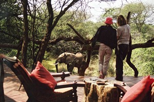 Game Viewing At The Main Lodge At Makanyane