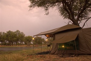 Northern Botswana Highlights Safari 1
