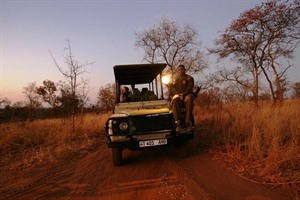 Optional Night drive in custom built a 4x4 vehicles in Tarangire National Park
