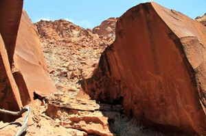 Rock Engravings in Damaraland