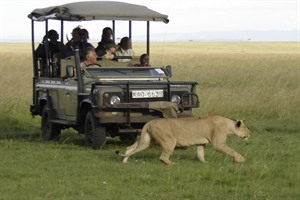 Out of Africa Luxury Safari 2