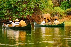Zambezi River canoe safari