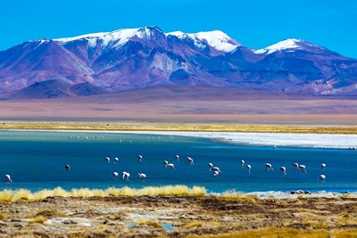 Chile - Atacama Desert, Lakes and Torres del Paine