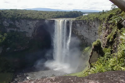 Guyana Nature Tour