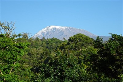 Kilimanjaro Group Climb - Lemosho Route