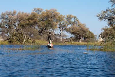 Lodge-Based Fly-in Botswana Safaris