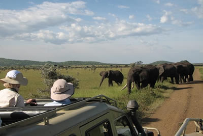 Northern Tanzania Explorer - Small Group Tour