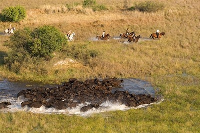 Okavango Horse Riding Safari