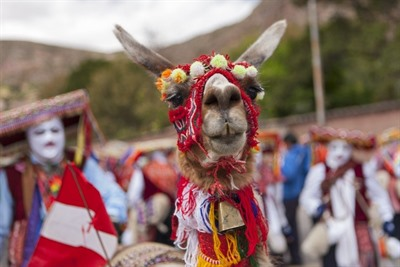 Treasures of Peru with Inti Raymi